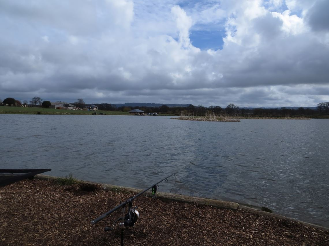 First swim at Lakeside View Fishery