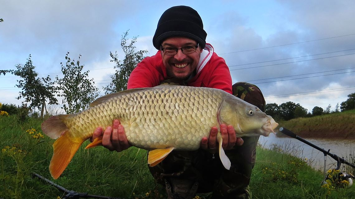 Common carp from Windmill Fishery carp lake