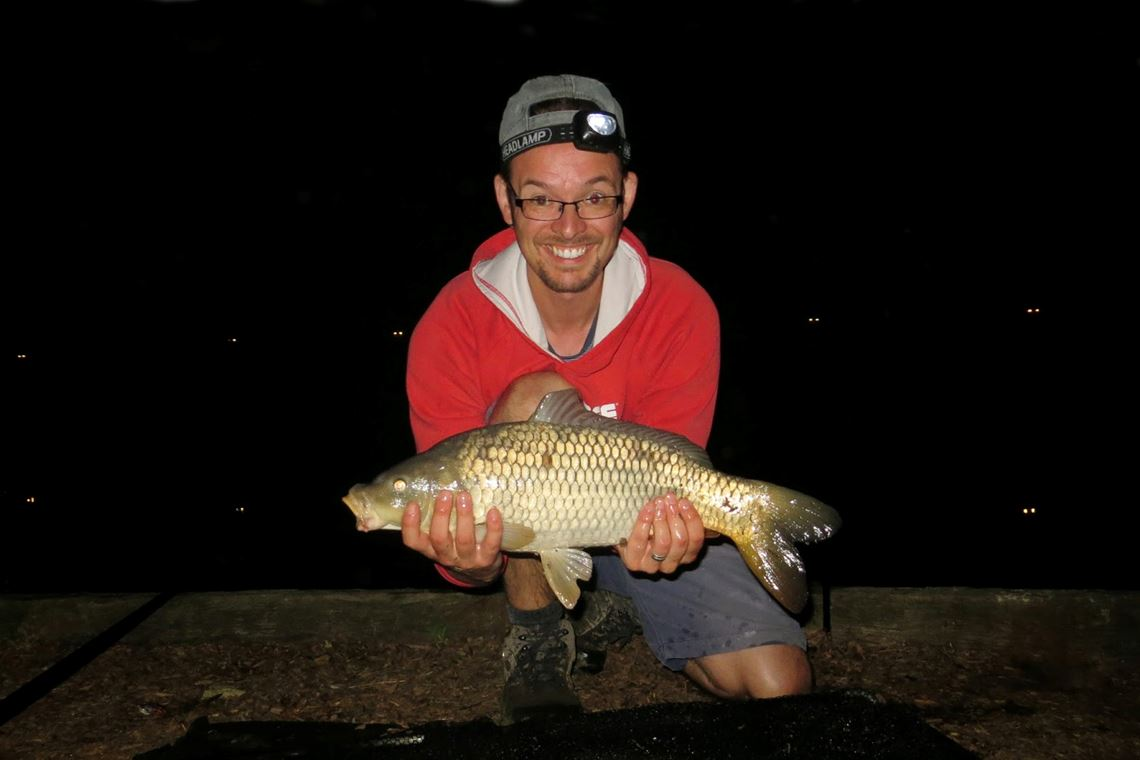 Common carp from Bagwood Lake