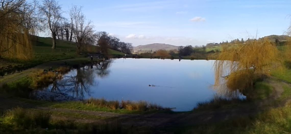 Harescombe Fishery Meadow Lake