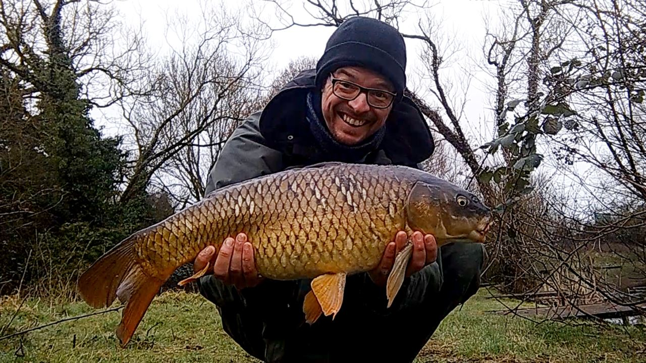 Common carp caught at the Holiday Inn Lake