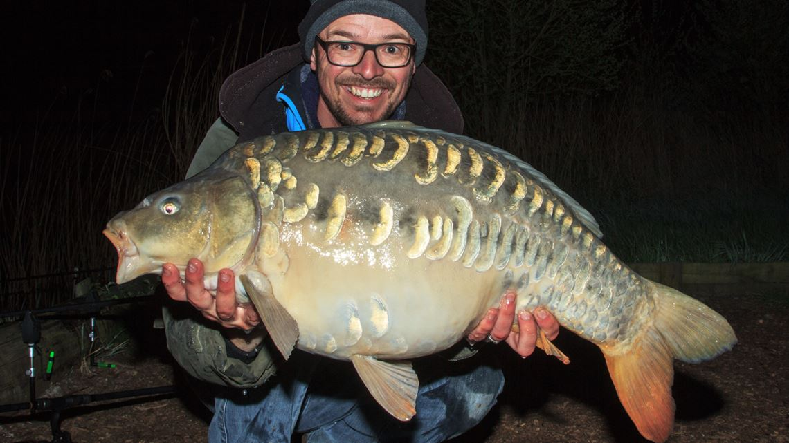 25lb mirror carp from Festival Fishery